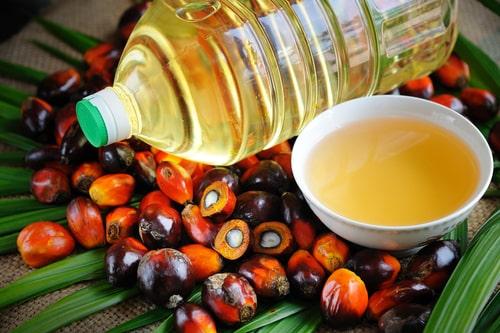Natural Fire en la extracción del aceite de palma